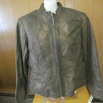 Alfani Petite women&amp039s Leather Jacket Size Large New With Tags Photo