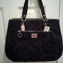 Brand New Coach Poppy Glam Tote Photo