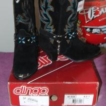 Dingo Women's Boots DI640 Black Suede Photo