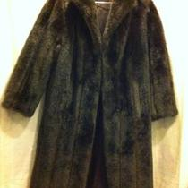 Faux Fur Coat Photo
