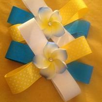 Hair bows Photo