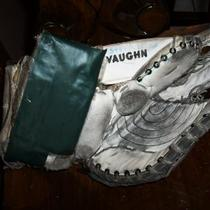 Hockey Goalie Glove Photo
