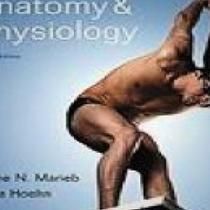Human Anatomy &amp; Physiology 8th Ed./Brief Atlas of the Human Body - (Brandon) Photo
