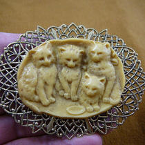 Kitten Kitty Babies Little Kittens With Milk Cameo Love Cats Lover Brass Pin Pendant Brooch Jewelry Cl90-3 Photo