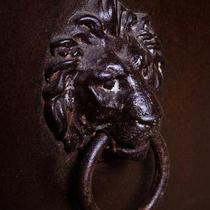 Lion Towel Ring Photo