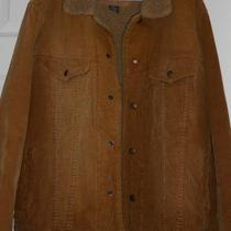 Men's Abercrombie & Fitch Brown Corduroy Jacket Sz M Photo