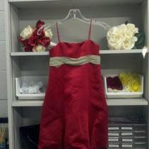 NEW Claret/Celedon Dress Sz 6 Photo