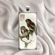 Owls - Glass Tile Pendant (B54b5) Photo