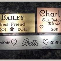Pet Memorial Custom Engraved Personalized Plate Gold, Silver, Bronze Photo