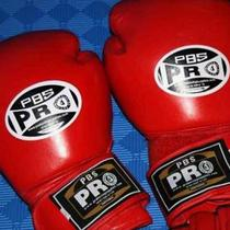 Professional Leather Boxing Gloves NEW Photo