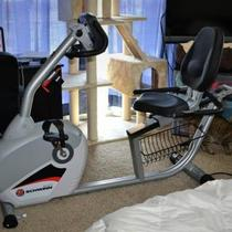 Schwinn 240 Exercise Bike - $300 Photo