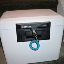 Sentry Fire safe Photo