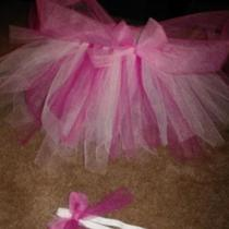 sleeping beauty tutu Photo