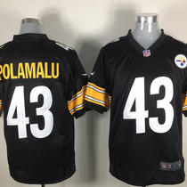 Troy Polamalu Nike Pittsburgh Steelers Nfl Jersey Photo